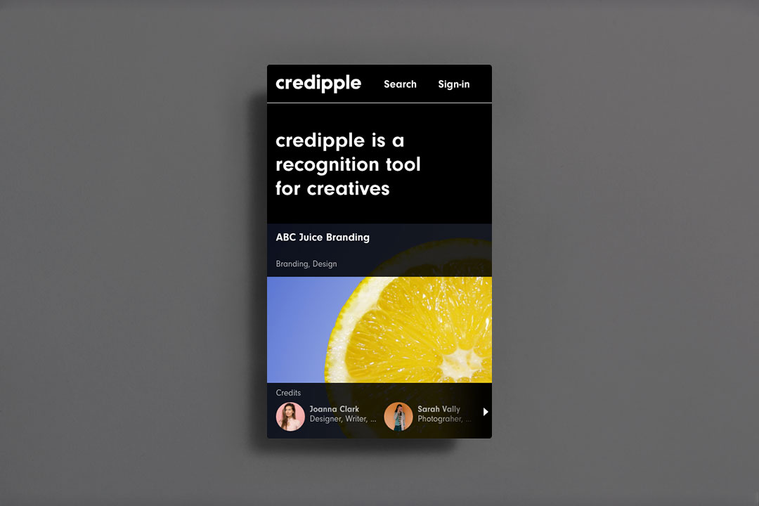 Credipple user interface